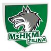 MsHKM Žilina