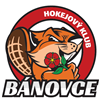 HK Spartak Bánovce